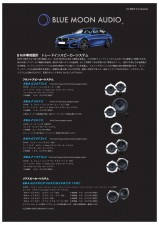 BLUE MOON AUDIO BMWシステム No.1黒